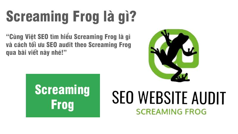 Screaming Frog là gì và cách tối ưu SEO theo Screaming Frog?