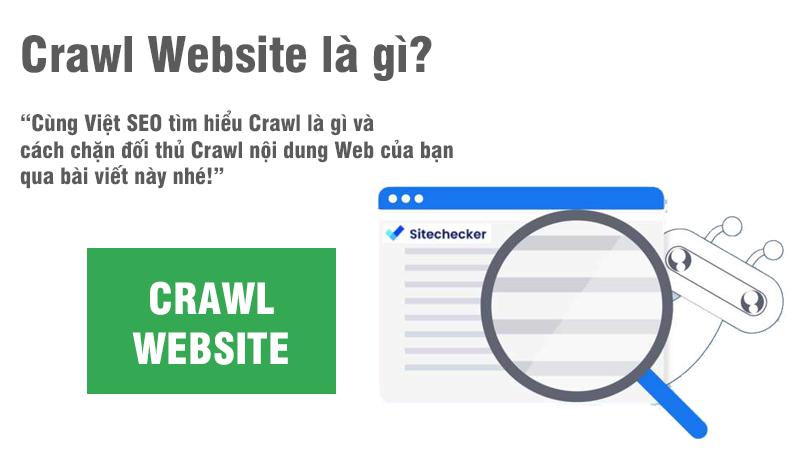 Crawl là gì và cách chặn đối thủ Crawl nội dung Web của bạn?