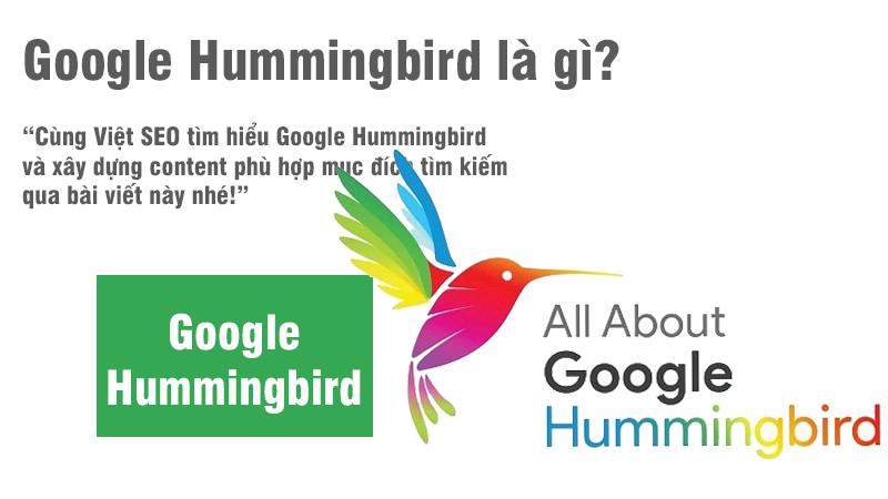 Google Hummingbird và xây dựng content phù hợp tìm kiếm?